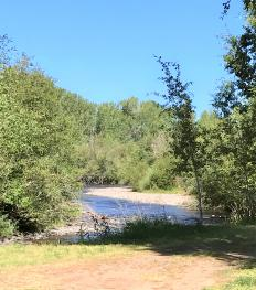 Chama River on the property.  Hook Some!