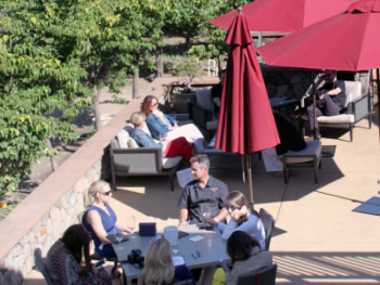 Or guests may have their private tasting in our vineyard garden.