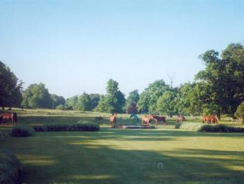 View across the croquet lawn and Ha ha to the park