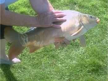 Fishing !!