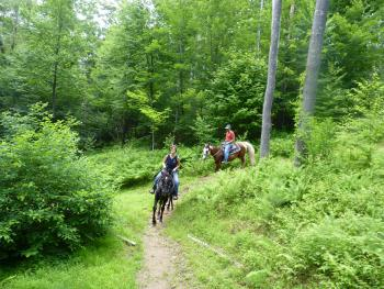 Horseback Riding is one of Many Local Activities