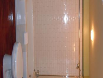 Standard Tub with Shower