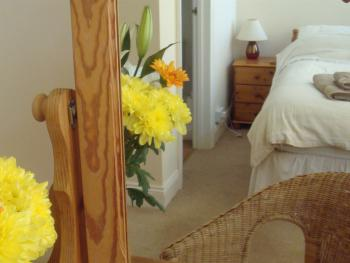 Harlequin Guest House -