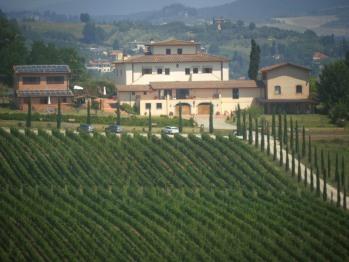 Il Borgo e le sue vigne