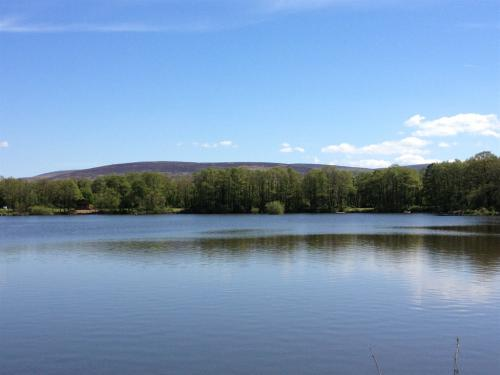 Amazing 24 acre lake with amazing views with large river , streams , waterfalls ..
