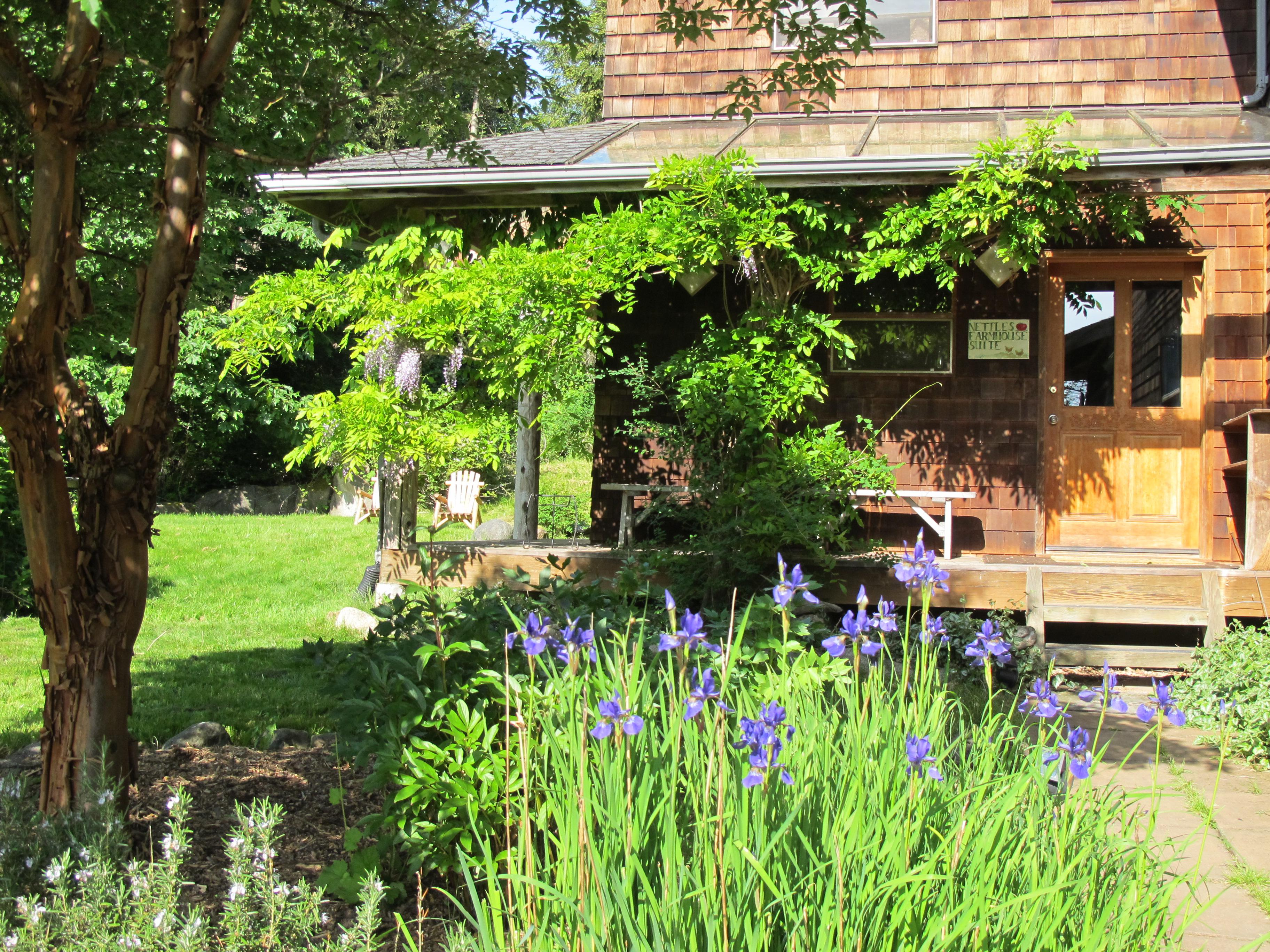 Quad room-Ensuite-Standard-Farm House Suite