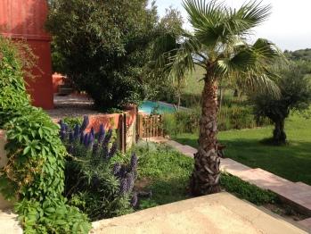 Jardin Clos des Aspres
