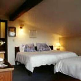 Single room-Shared Bathroom-Economy-Countryside view-Meadow