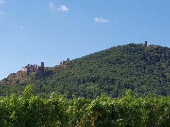 Les 3 Châteaux de Ribeauvillé