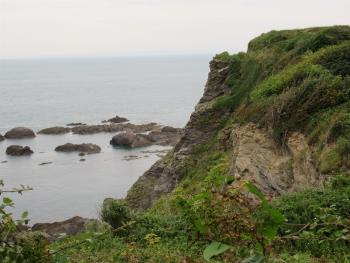 View from Torrs Walk