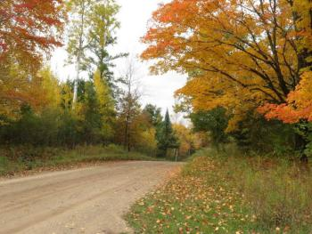 Eberhart Avenue from our driveway ~ fall scene