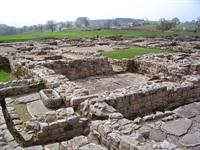 Vindolanda Archaeological dig and museum