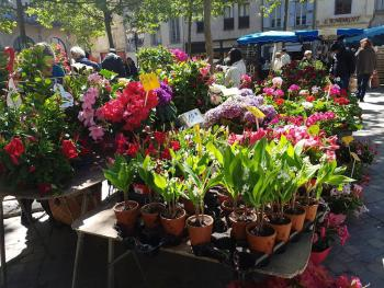 Flower seller at the Saturday morning market, Place Carnot