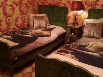 Twin room-Deluxe-Ensuite with Shower-Garden View-The art room - Twin room-Deluxe-Ensuite with Shower-Garden View-The art room