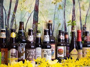 We Have an Extensive Selection of Beers Available