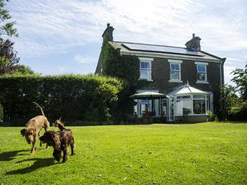 Dowfold House Luxury Bed and Breakfast - dogs love it here