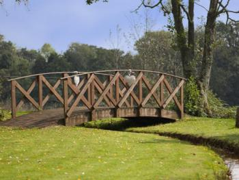 Bridge & Grounds