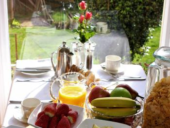 Breakfast table view of garden
