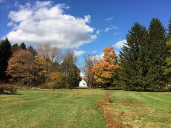 Back Lawns in the Fall Looking Towards the Cottage
