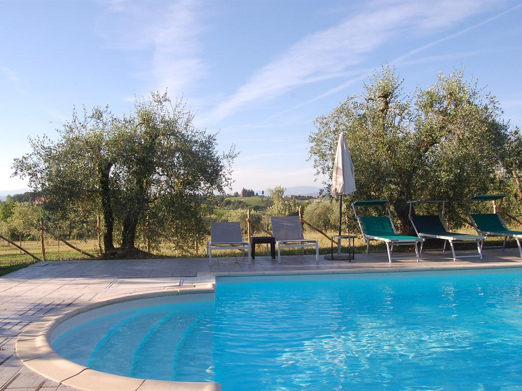 View around eco swimmingpool