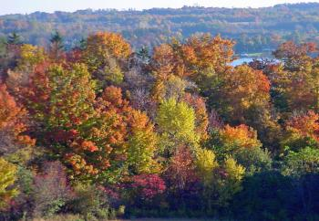 Fall colors along the Erie Canal