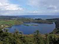 LOUGH HYNE (LAKE AND WOODLAND)