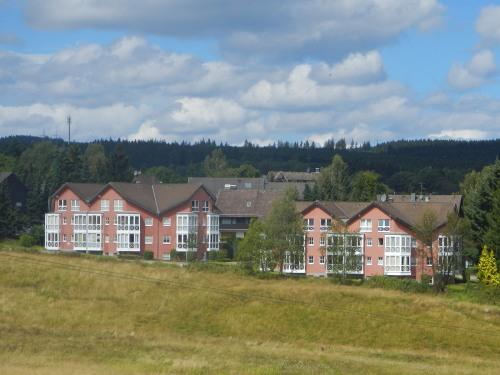 Bergwiese mit Apartmentanlage