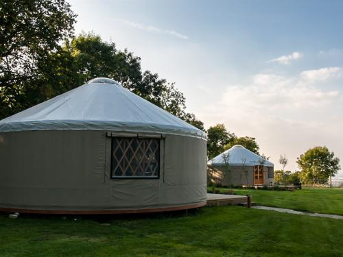 Our yurts are located overlooking surrounding fields of West Park Farm with wonderful views.