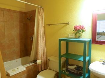 Mountain Laurel Bathroom with jacuzzi tub & shower