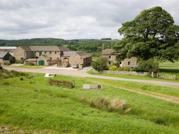 Wydon farm