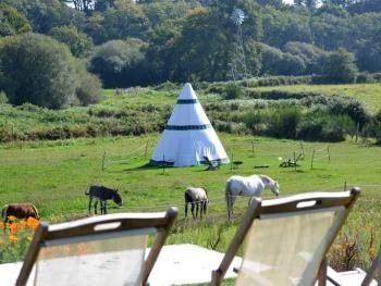 Vue depuis la terrasse : Tipi au milieu des chevaux