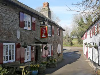 The Dolphin Inn -