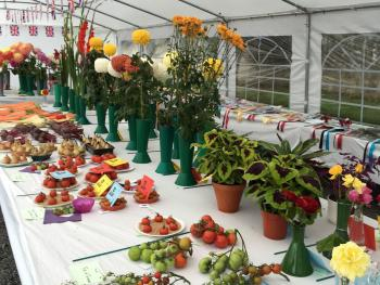 The Boatside Inn Horticultural Show