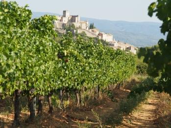 Le château depuis nos vignes