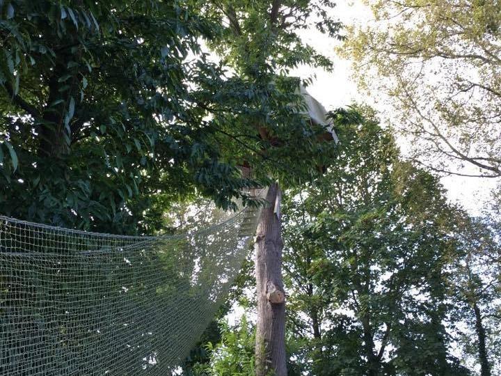 Treecamp Adventure-Cabane-Salle de bain partagée