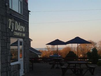 Ty Dderw Country Inn - patio