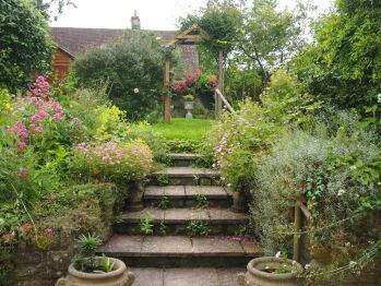 Clare Cottage garden