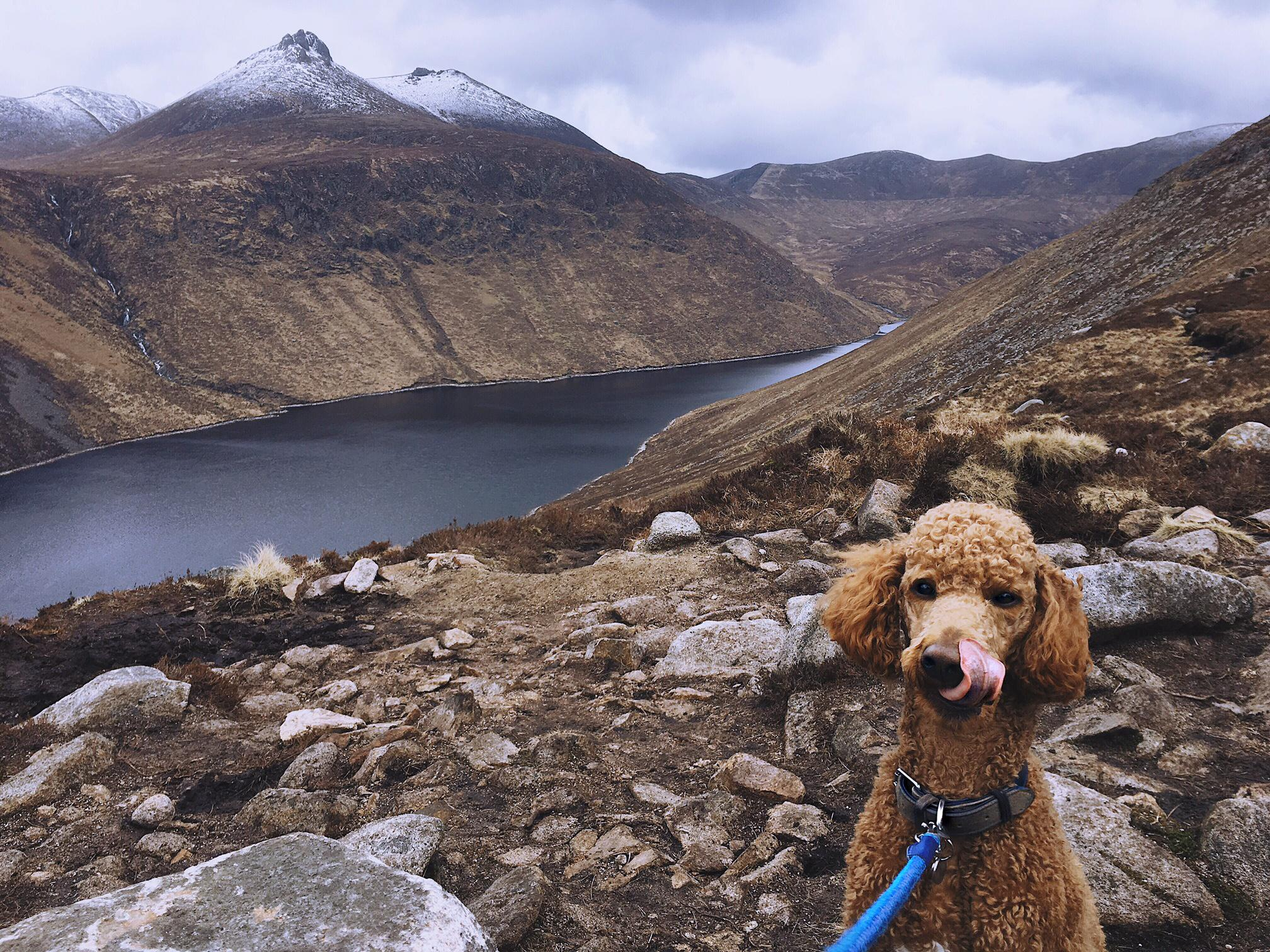 Ben Crom Resevoir & Mourne Mountains