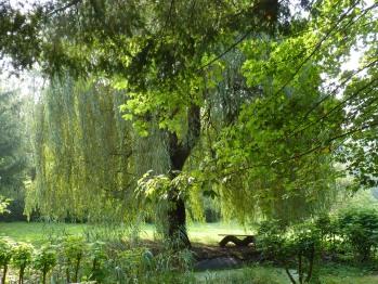 Eingang in den Kräutergarten