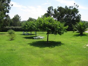 jardin de la residence Marina Di Fautea