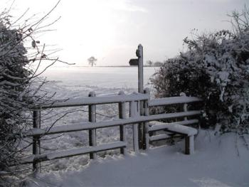 Footpath from the back door