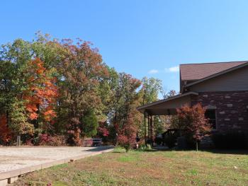 Hermann South Bed & Breakfast, Pretty Autumn Leaves in October