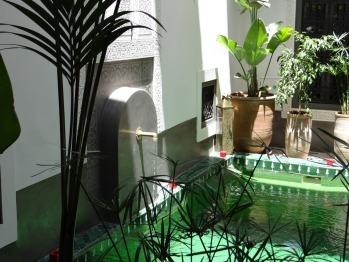 Riad le Jardin Des Sens - Ambiance Végétale au Riad le Jardin des Sens