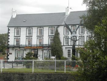Neuadd Arms Hotel - The hotel