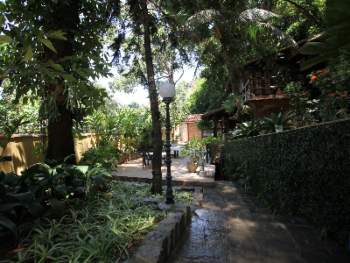 Path to our tropical gardens, bar, deck and pool area
