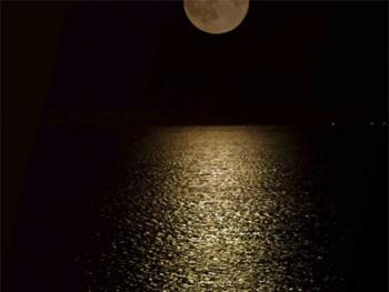 Moon Light Reflecting Off The Ocean Seen At The Inn