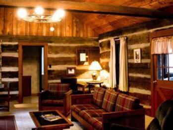 Cabin-Private Bathroom-Standard-Woodland view-Cabin in the Glen
