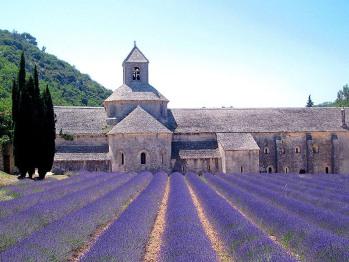 L'Abbaye de Senanque, proche des Terrasses de Gordes