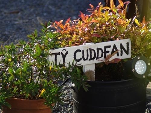 Ty Cuddfan