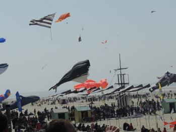 le festival de cerfs volants
